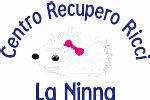 Bracciale Kidult Acciaio agata Ciondolo Riccio | Mondo Segreto - Animal Planet - 731542